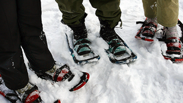 Snowshoeing Afternoon