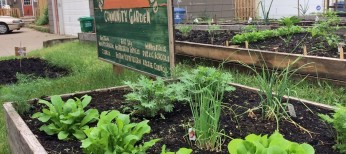 Beltrami Community Garden Now Accepting Applications for 2021!