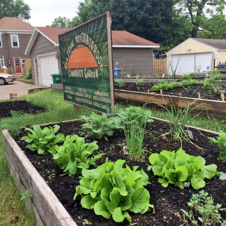 Apply for a Plot in the 2020 Beltrami Community Garden